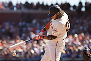San Francisco Giants shortstop Brandon Crawford (35) fouls off a pitch against the Los Angeles Dodgers at AT&T Park in San Francisco, Calif., on October 1, 2016. (Stan Olszewski/Special to S.F. Examiner)