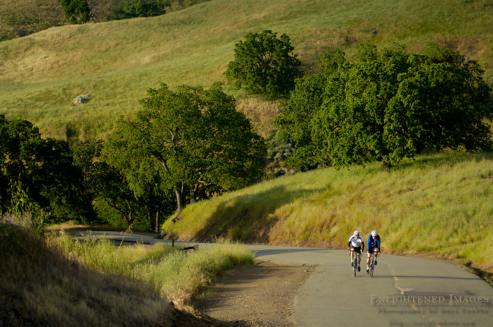 Bicycle riding on twisting curves on road through grass hills and oak trees, Mount Diablo State Park, California