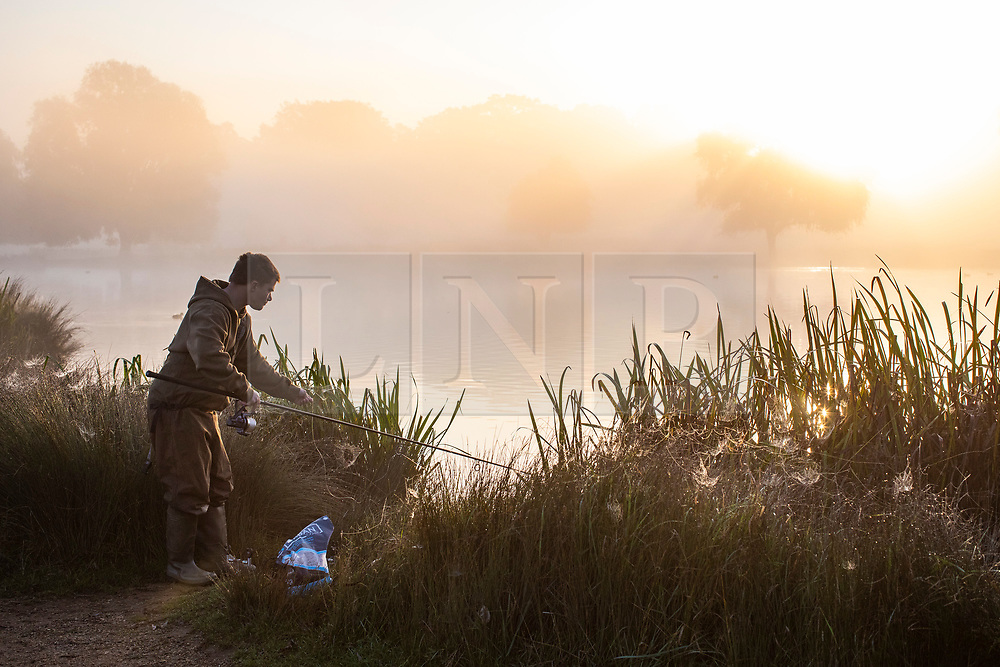 © Licensed to London News Pictures. 10/10/2018. London, UK. A fisherman at sunrise in Bushy Park, south London. Forecasters are expecting unusually warm temperatures for October. Photo credit: Rob Pinney/LNP
