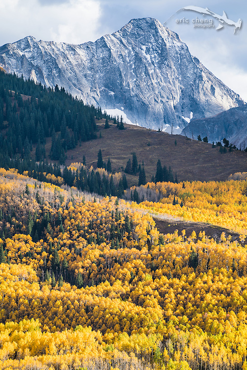 Aspen trees and mountain at Capitol Peak, Aspen Colorado.