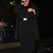Concert Dario, Imca Marina