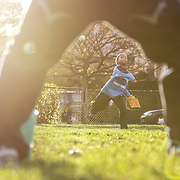 Trey Brown Jr., 7, plays catch with his dad at Fox Park in Oak Park, Thursday, Sept. 27, 2012.  | J.Geil Photography