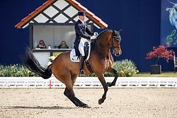Gießelmann, Jan-Dirk (GER), Real Dancer FRH<br /> Hagen - Horses and Dreams 2017<br /> © Stefan Lafrentz