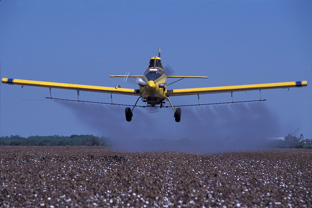 Aerial spraying is used in parts of almost every state in the nation to apply pesticides and herbicides, or, in the case of cotton plants in Texas, desiccants that cause the vegetation of the cotton plant to die and fall away.  Historically, frost would kill the plant, leaving the cotton bolls ready for harvest; but to speed up the process, farmers today artificially cause the plant to die  so that the cotton can be harvested.  Aerial spray pilots are some of the most fearless pilots in the sky, often flying within feet of the ground, avoiding telephone lines and other obstacles.  .
