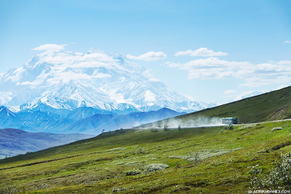 A tour bus full of tourists travels down the dusty Park Road in Denali National Park, Alaska.
