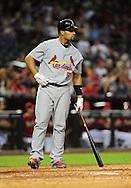 Apr. 13 2011; Phoenix, AZ, USA; St. Louis Cardinals batter Albert Pujols (5) reacts while at bat during the second inning against the Arizona Diamondbacks at Chase Field. Mandatory Credit: Jennifer Stewart-US PRESSWIRE..