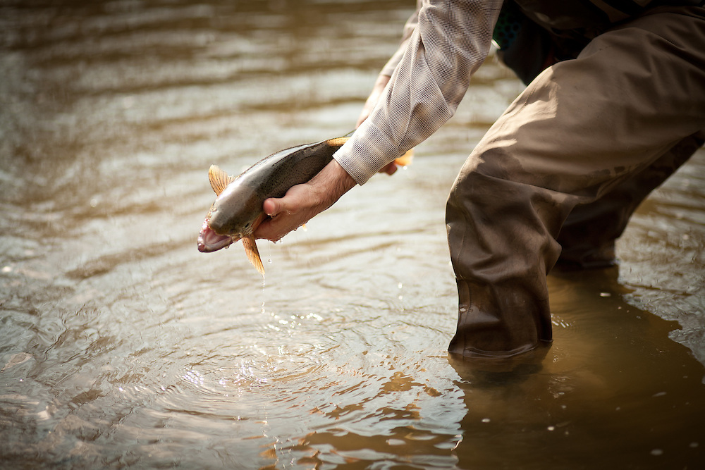 Fly Fishing for spring Steelhead on Pennslyvania's Elk Creek