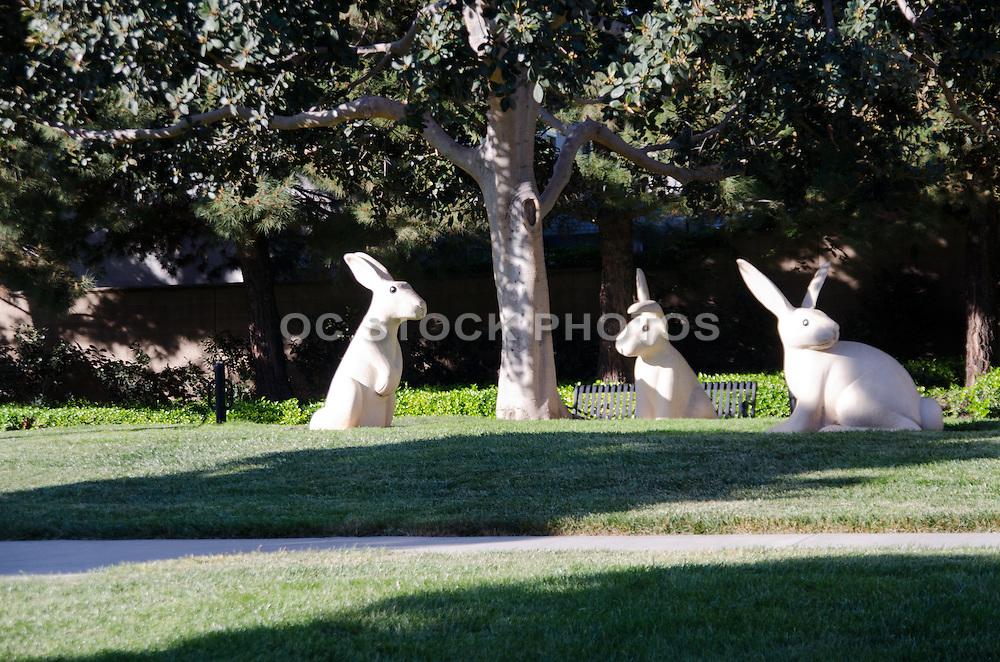 Northpark Community Neighborhood  of Irvine