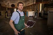 last day of harvest vintage 2017, Cristom Vineyards, Eola-Amity Hills AVA, Willamette Valley, Oregon