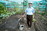 Allotment in Brent are a haven of silence and peace, with lots of produce growing in abundance. <br />