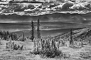 Scenic from Ogilvie Summit on t he Dempster Highway<br />Dempster Highway<br />Yukon<br />Canada