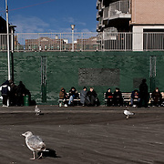 Russians waiting on a bench. Coney Island. Promenade of Brooklyn Beach.