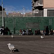 Russians waiting on a bench. Coney Island. Promenade of Brooklyn Beach.