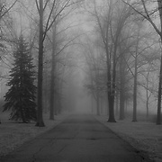 """""""To Where it Leads""""<br /> <br /> Where does this lead? No one knows! Thick fog engulfs everything along this tree lined road!!<br /> <br /> All about Fog by Rachel Cohen"""