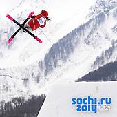 Olimpiadi Sochi 2014 di tutto un po'