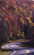 Northwest PA, winding road with mountain of fall foliage, Allegheny National Forest