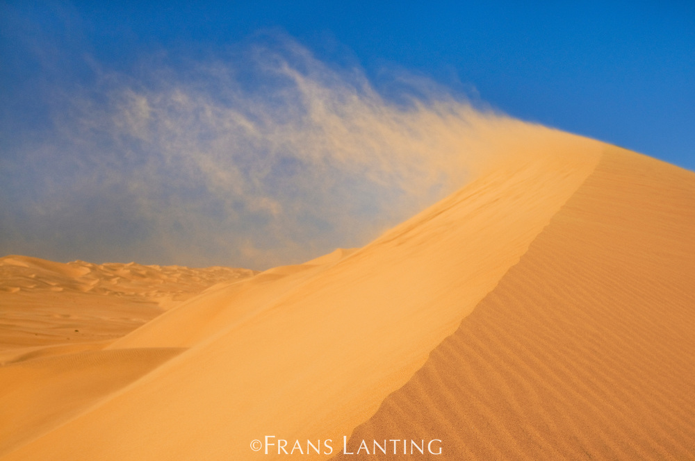 Wind blowing sand off dune, Namib-Naukluft National Park, Namibia