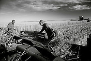Farming in D'Arcy, Saskatchewan.