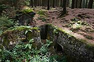blasted bunker 113 of the Sigfried line in the Huertgen Forest near Raffelsbrand, North Rhine-Westphalia, Germany.<br /> <br /> gesprengter Bunker 113 des Westwall im Huertgenwald bei Raffelsbrand, Nordrhein-Westfalen, Deutschland.