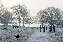 © Licensed to London News Pictures. 23/01/2015. Richmond, UK. People enjoy the forty start to the morning.  A cold frosty morning in Richmond Park, Surrey today 23rd January 2015. The UK is experiencing some very cold weather. Photo credit : Stephen Simpson/LNP