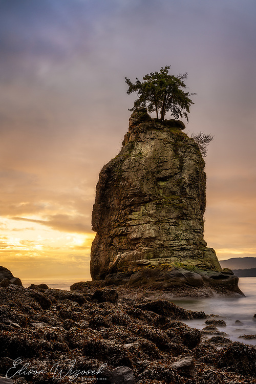 Vancouver's only sea stack