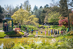 © Licensed to London News Pictures. 16/04/2014. Cliveden, UK. People cross stepping stones to the Chinese pagoda in the water garden.  People enjoy the   sunshine at Cliveden in Buckinghamshire today 16th April 2014. Photo credit : Stephen Simpson/LNP
