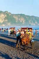 Java, Yogyakarta. A beach south of Yogyakarta. Horse cab.