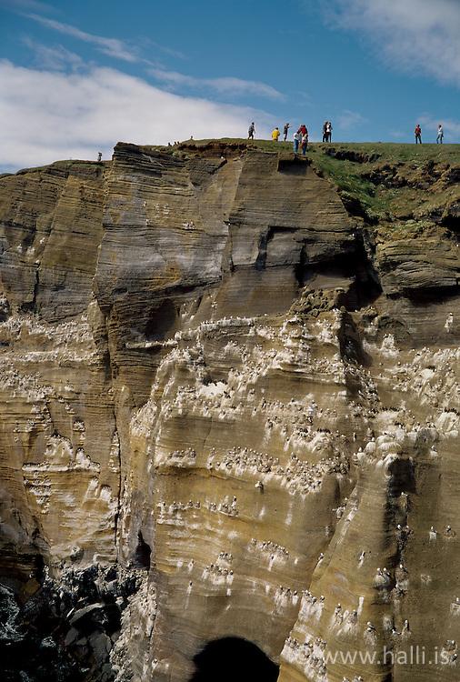 Tourists at Thufubjorg, peninsula of Snaefellsnes, Iceland - Ferðamenn við Þúfubjörg á Snæfellsnesi