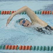 2004 Hurricanes Swimming