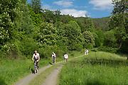 Naturschutzgebiet am Edersee, Nordhessen, Hessen, Deutschland | nature reserve on Lake Eder, Hesse, Germany