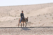 Bedouin boys riding donkeys Photographed in the Negev Desert, Israel