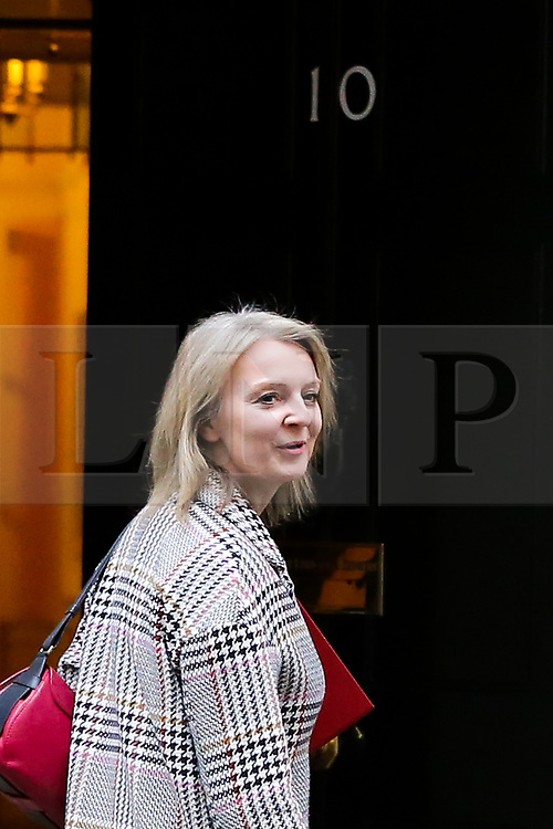 © Licensed to London News Pictures. 05/02/2019, London, UK. Liz Truss - Chief Secretary to the Treasury arrives in Downing Street for the weekly Cabinet meeting. Photo credit: Dinendra Haria/LNP