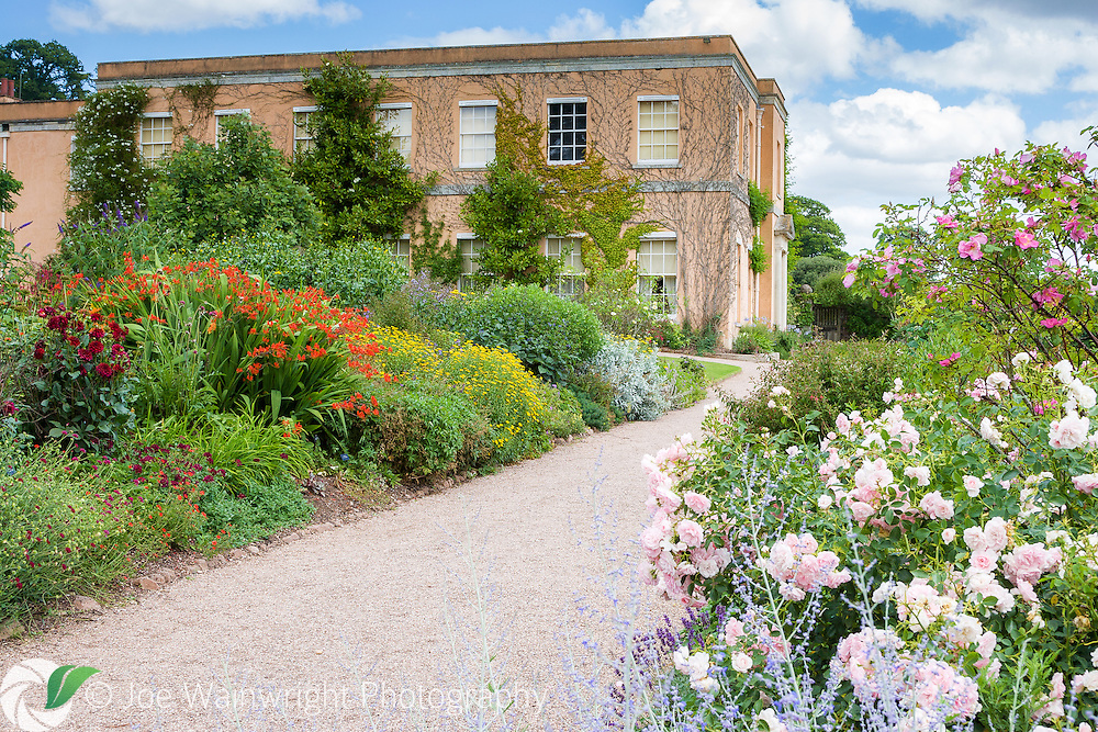 Colour throughout the year can be enjoyed in the 18 acre hillside garden of Killerton House, near Exeter. This photograph was taken in July. It is a National Trust property.