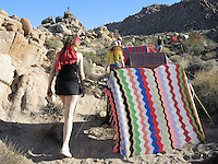 "High Desert Test Sites 2013, Lea Donnan, ""Desert Applique"""