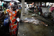 A large catfish is sold in Kisangani market, DR Congo. Fish is a primary food source for the Congolese.