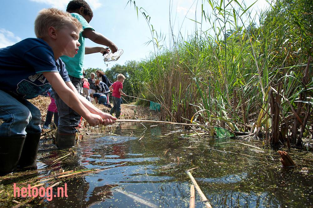 nederland, enschede, hof espelo 11juli2012 Natuureducatie op de woensdagmiddag bij hof espelo net iets ten noorden van enschede. Kinderen kunnen tegen een kleine vergoeding deelnemen aan het zoeken van waterbeestjes in een poel op hof espelo.