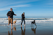 Young adult couple and their dogs playing in the surf and running on the beach; Oregon Dunes National Recreation Area, central Oregon coast.