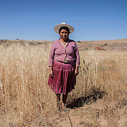Farmers in the fields of Anzaldo, near Cochabamba, in the Bolivian Andes