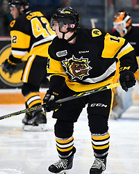 Will Bitten of the Hamilton Bulldogs. Photo by Aaron Bell/OHL Images