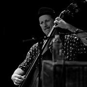 Jim Kerwin, Bassist with David Grisman Group