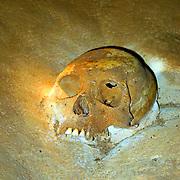 Mayan skull embedded in limestone in Actun Tunichil Muknal Cave, Cayo, Belize