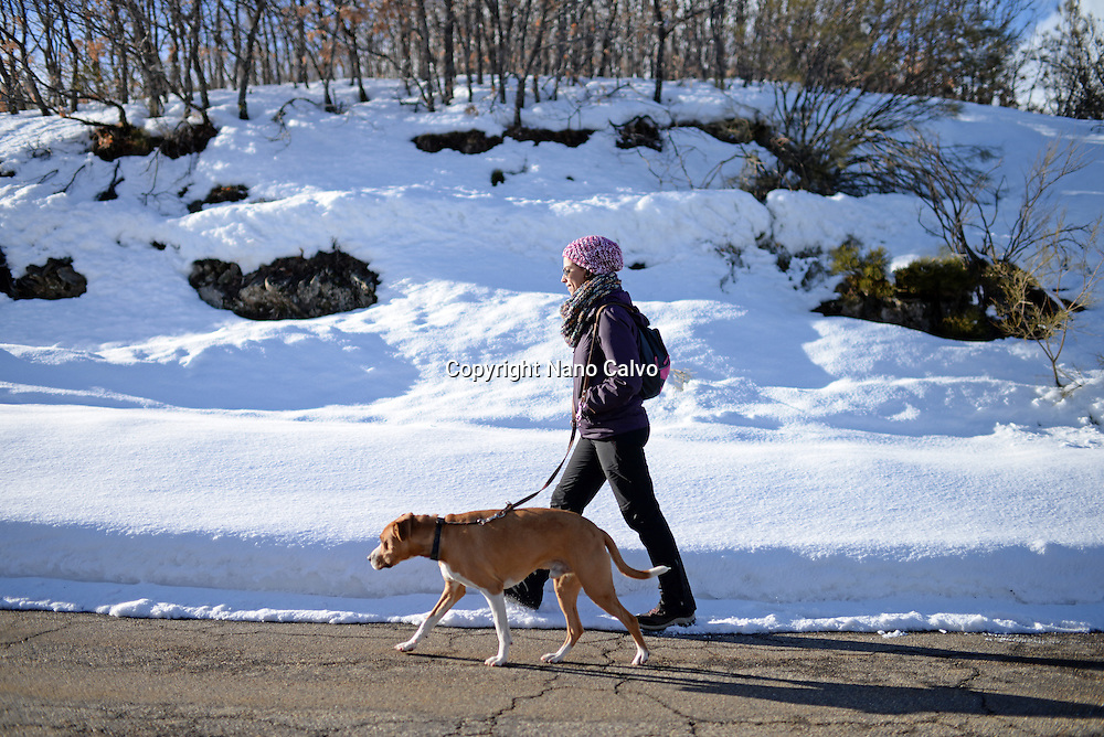 Young woman walks with her dog in winter environment