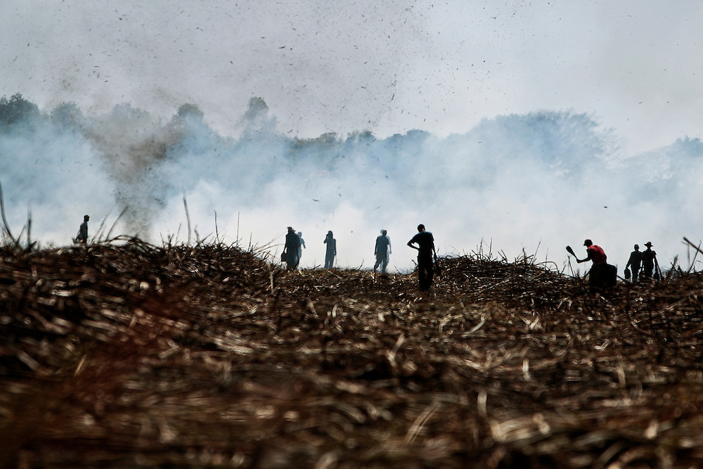 A sugar cane cutters are seen during a labor day of the San Antonio sugar plantation where 'Flor de Cana' rum is produced, Chichigalpa, Nicaragua. A mysterious epidemic is devastating the Pacific coast of Central America, killing more than 24,000 people in El Salvador and Nicaragua since 2000 and striking thousands of others with chronic kidney disease at rates unseen virtually anywhere else. Many of the victims were manual laborers or worked in the sugarcane fields that cover much of the coastal lowlands.
