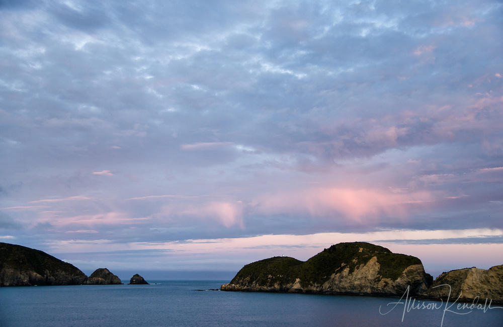 The travel experience on a calm autumn evening, from Picton, New Zealand to Wellington across the Cook Strait on the ferry.