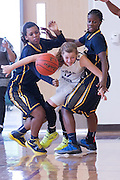 Cedar Ridge Raider Melinda Merritt attempts to escape the pressure of Stony Point defenders Miranda Spearman (left) and Doriana Brown Saturday at Cedar Ridge Gym.  The Raiders beat the Tigers 66-58 in conference play.  (LOURDES M SHOAF for Round Rock Leader.)
