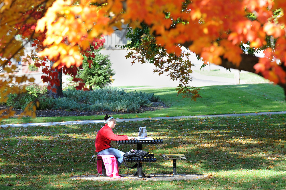 A student studies under a tree near Rockwell hall/