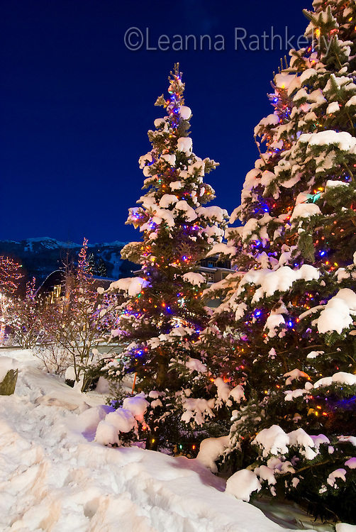 The lights of Christmas sparkle on snowy trees in Whistler Village, BC Canada.