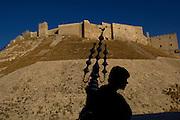 The Citadel Aleppo