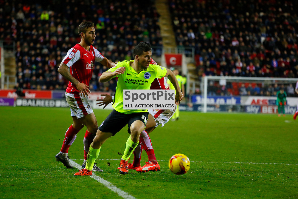 Tomer Hemed on the attack during Rotherham United v Brighton, SkyBet Championship, Tuesday 12th January 2016, AESSEAL New York Stadium, Rotherham
