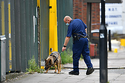 © Licensed to London News Pictures. 29/06/2017. London, UK. A sniffer dog being used at the scene where an 18 year old man was stabbed to death at a warehouse party in Acton, West London early this morning. Photo credit: Ben Cawthra/LNP